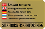 Fishing permits for a year