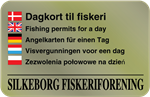 Fishing permits for a day